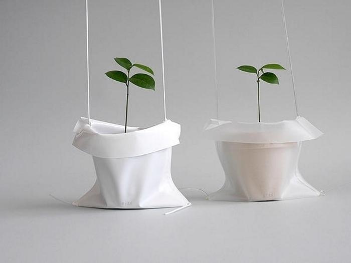 植木を主役にできちゃうデザインだね
