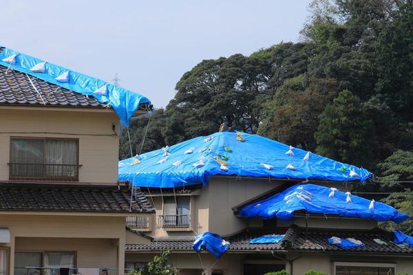 「割高」「火災保険金額の半分まで」でも地震保険が必要な理由