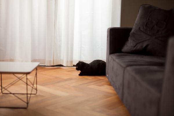 床暖房のメリット&デメリットを種類別に解説。あなたに向くのは?