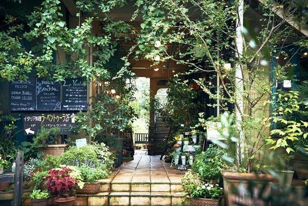 オアシスのような東京の花屋/華々(ハナバナ)