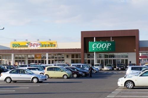 ショッピングセンター 車で11分(生協、ダイソー、ゲオ、未来屋書店、ダイシン、まるまつ、マクドナルド)