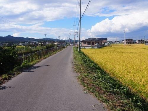 現況写真 西側 前面道路(南側から撮影)