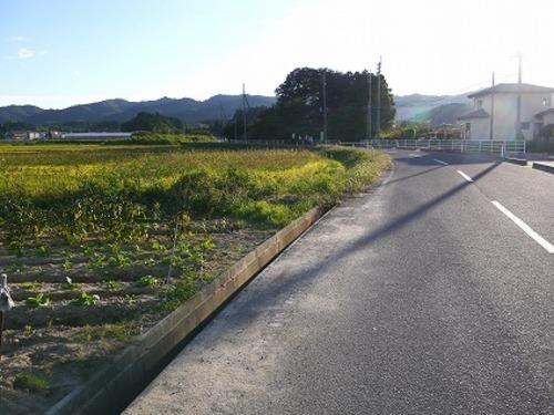 現況写真 北側 前面道路(東側から撮影)