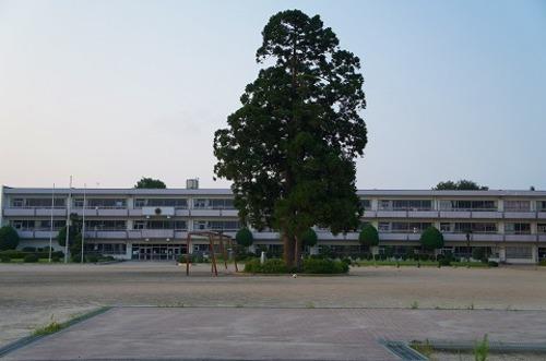 小学校 亘理小学校 徒歩22分(約1700m)