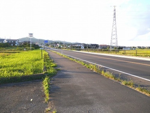 現況写真 東側 前面道路