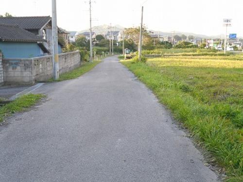 現況写真 西側 前面道路