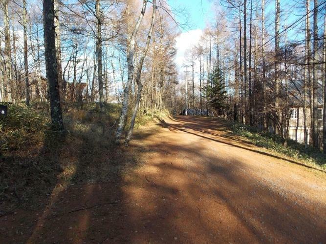 現況写真 前面道路 2014年11月撮影