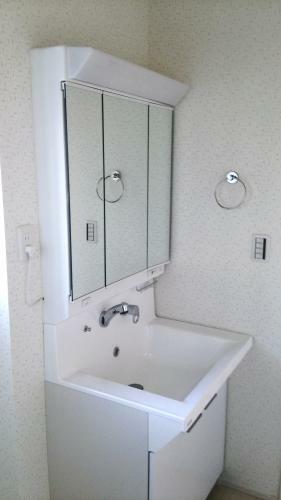 同仕様写真(内観) 洗面台は毎日使いやすい三面鏡です。(参考例です)