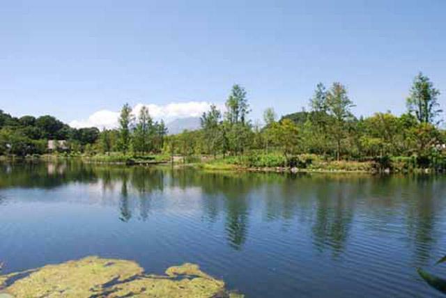 公園 レマン湖