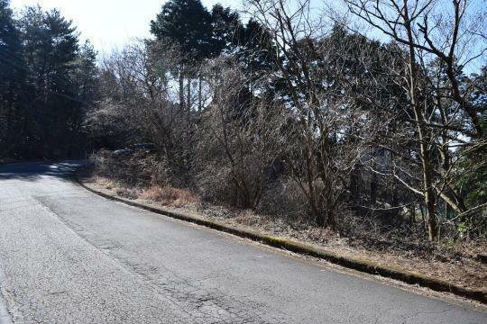 現況写真 東側別荘地内の幹線道路に接しています