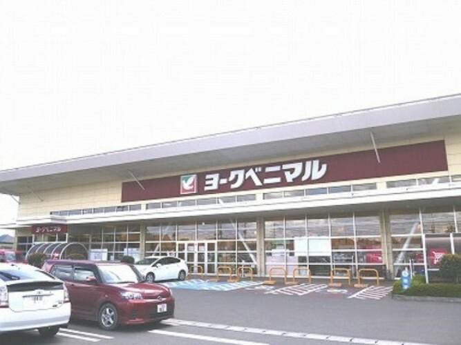 ショッピングセンター ヨークベニマル亘理店 徒歩8分(約600m)