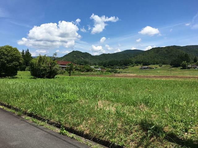 現況写真 福岡(地目:畑)