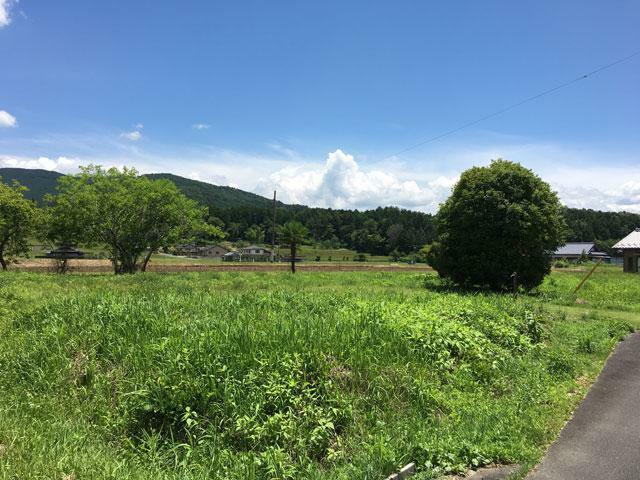 現況写真 福岡(地目:宅地)