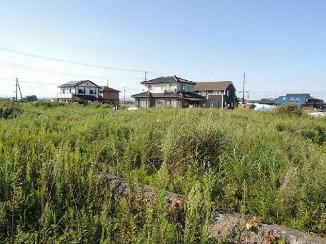 現況写真 荒浜字鳥の海 現地土地です。