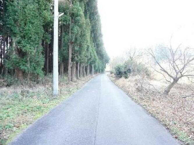 現況写真 前面道路は開放的な約5m幅の公道です。