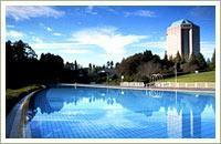 現況写真 全長130mの屋外プール