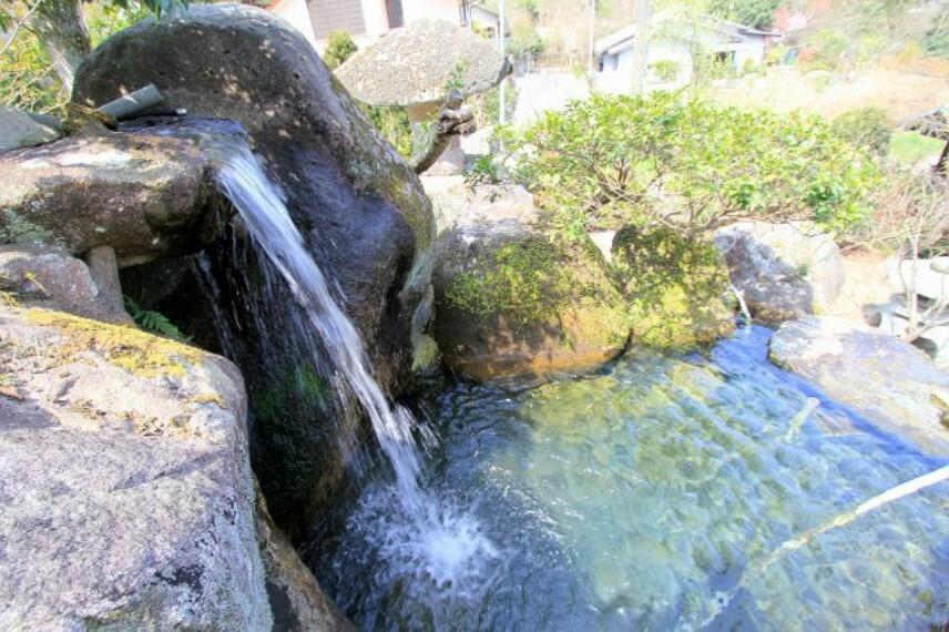 庭 池の水は川から引いております!