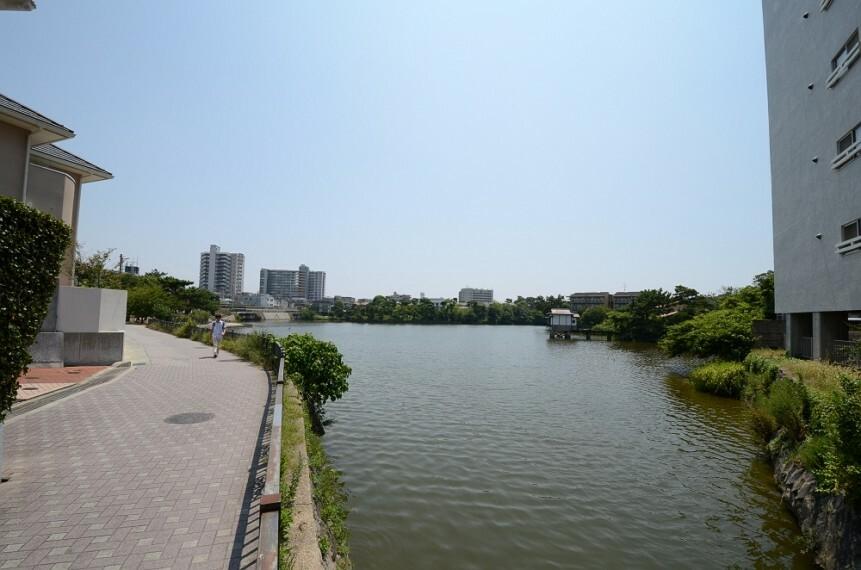 公園 【公園】弁天池公園まで598m