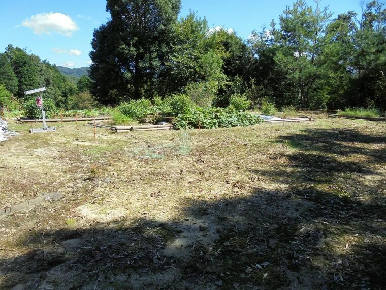 庭 畑スペースです