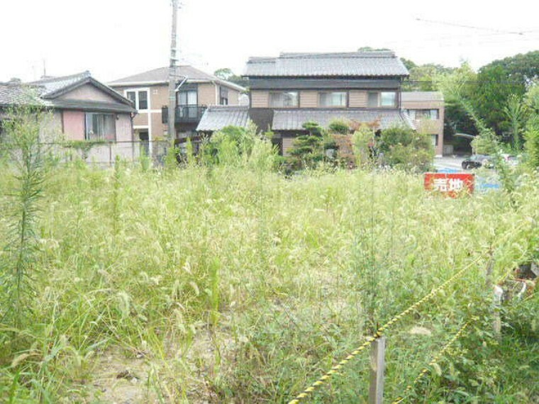 外観・現況 規制:半田市ふるさと景観計画・高さ制限10m