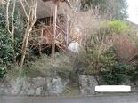 伊豆の国市韮山山木