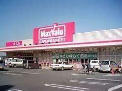 スーパー マックスバリュ三島壱町田店