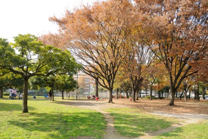 公園 【公園】青山公園まで749m