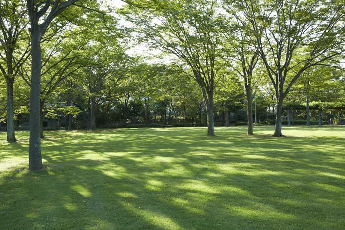 公園 多田羅田公園(約1490m・徒歩19分)