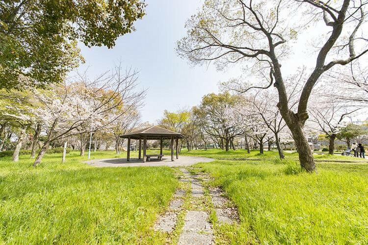 公園 【周辺環境/中島公園】 自然に恵まれた穏やかな住環境に誕生。