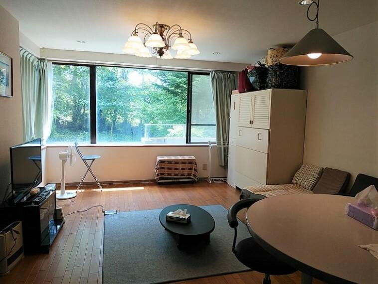 居間・リビング 約17.1畳 ワンルームタイプ