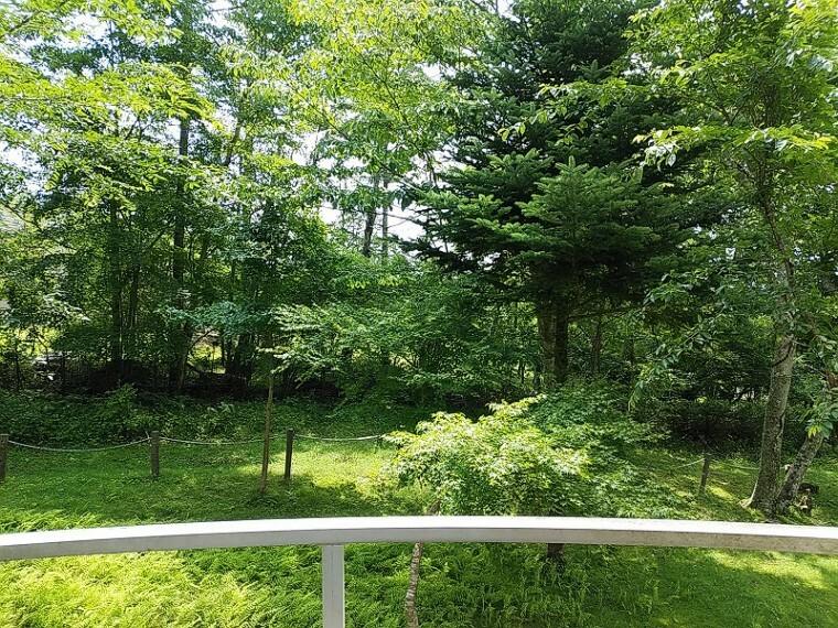 外観・現況 お部屋からの眺望 緑が広がります