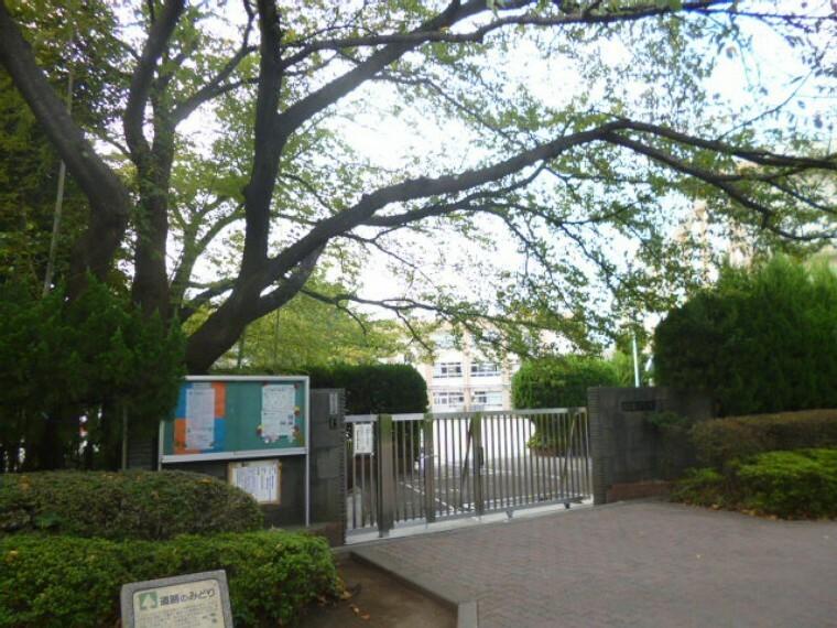 小学校 【小学校】豊島区立要小学校まで229m