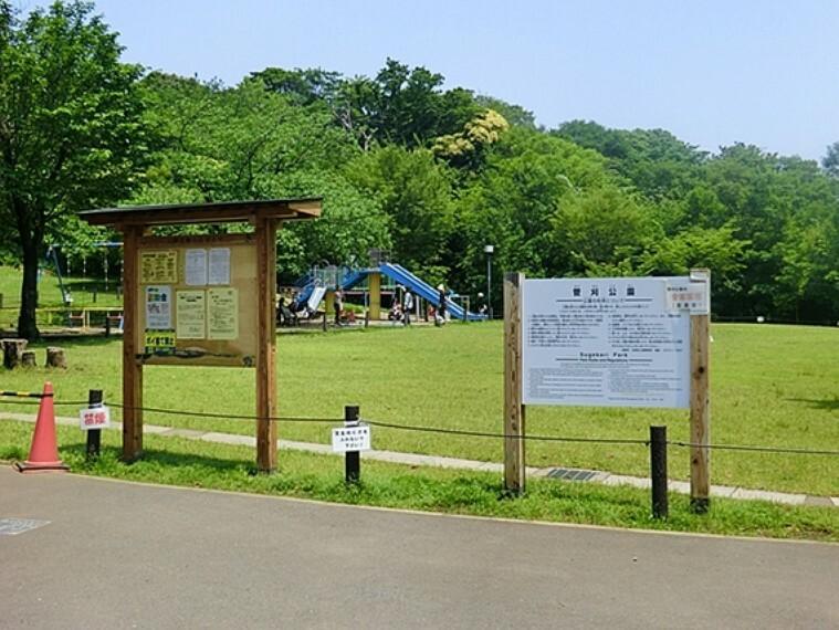 公園 菅刈公園