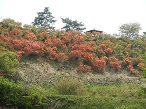 公園 武石公園 徒歩23分。