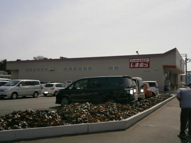 ショッピングセンター しまむら青梅新町店 徒歩55分(約4400m)