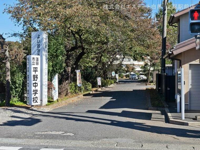 中学校 蓮田市立平野中学校