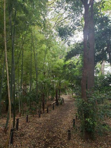 公園 五郎様の森緑地 徒歩3分。