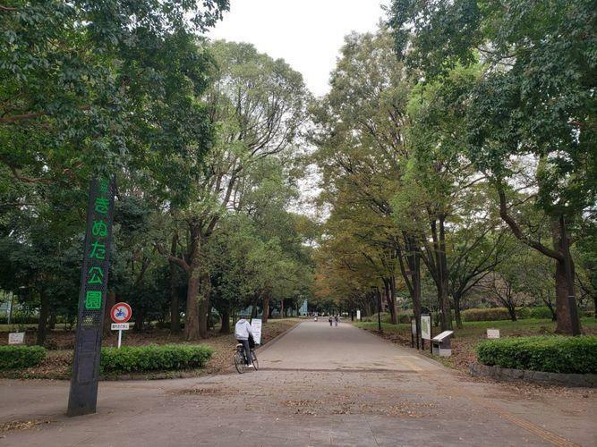 公園 きぬた公園 徒歩6分。