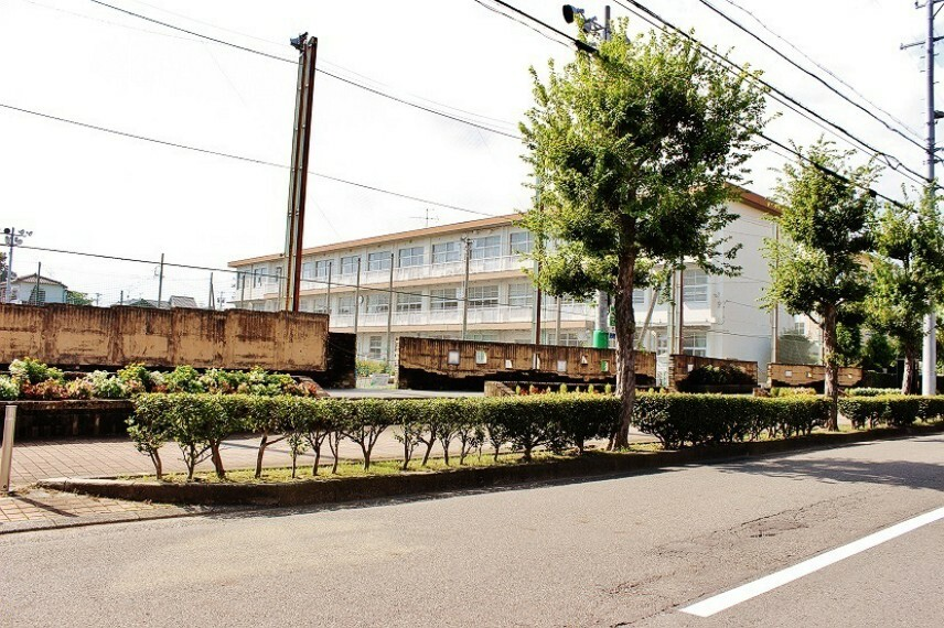 小学校 清水浜田小学校