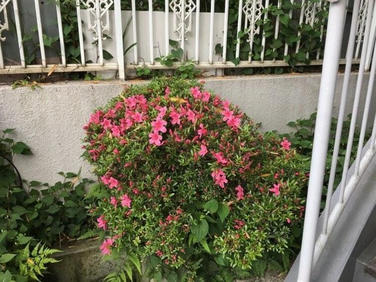 庭 ご近所づきあいで暮らしを豊かに。