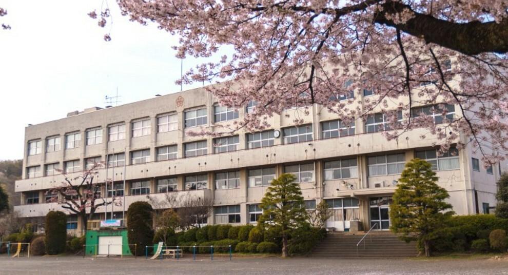 小学校 【小学校】相模原市立川尻小学校まで806m