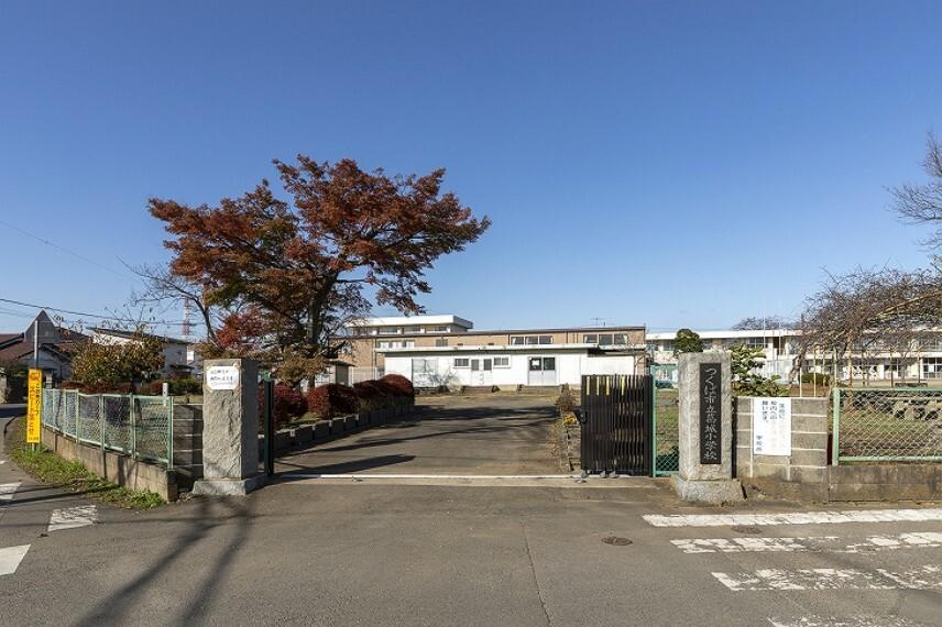 小学校 市立葛城小学校(徒歩11分、約840m)(2019年12月撮影)…創立128年の歴史を誇る学校です。大きな桜、ポプラが学校のシンボルにもなっています。