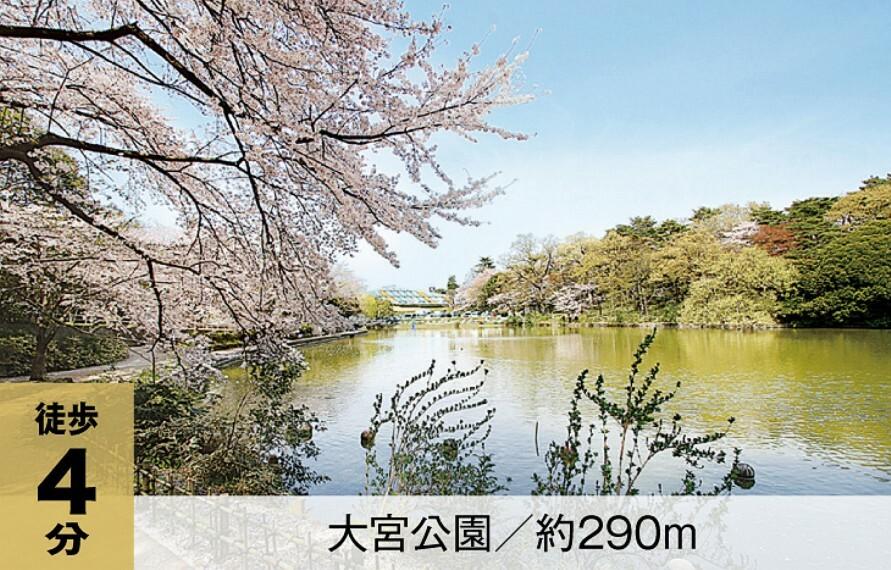 公園 埼玉県最初の県営公園。樹齢百年を超える赤松や1200本もの桜など、四季折々の変化が楽しめるほか、硬式野球場から児童遊園地など施設も豊富に揃います。