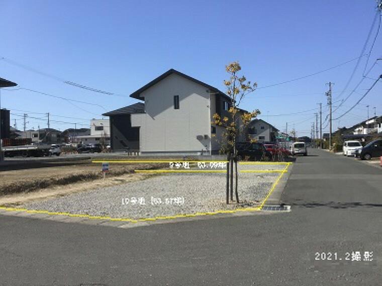 現況写真 10号地北東角から撮影(2021年2月) (手前から10号地、奥9号地)