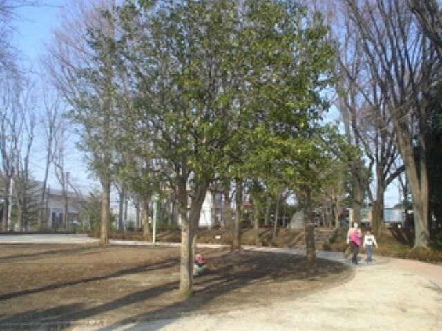 公園 【公園】松渓公園まで508m