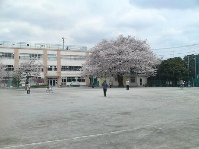 小学校 【小学校】浜田山小学校まで885m
