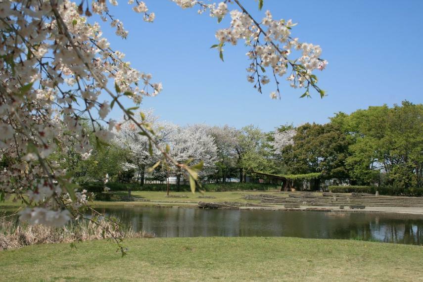 公園 <清瀬金山緑地公園>四季を通して多くの市民の憩いの場として親しまれている公園です。園内には多くの樹木や野草が植えられ、池にはカルガモなどの野鳥も。バーベキュエリアもあり、ご家族やお友達と楽しめます。