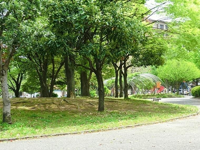 公園 反町公園