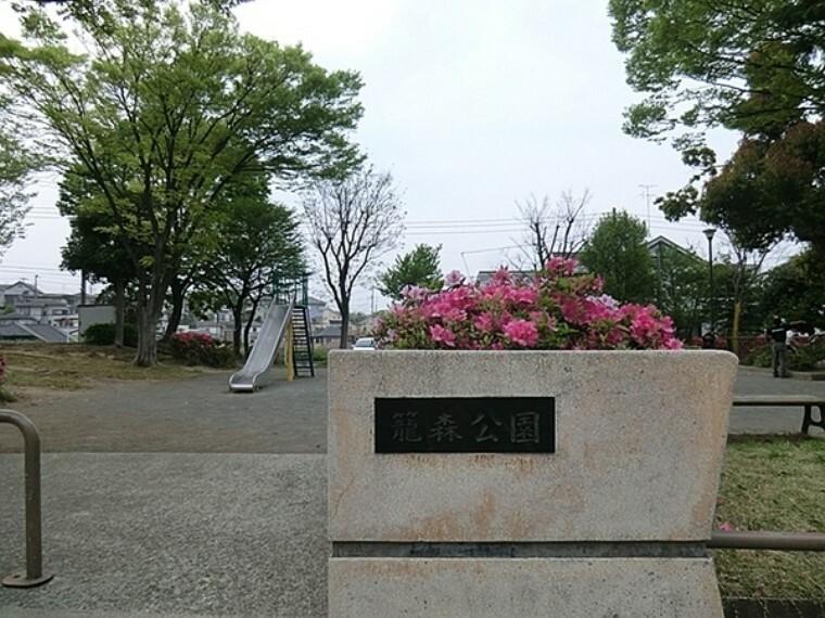 公園 籠森公園 横浜市営地下鉄ブルーライン上永谷駅徒歩7分。中央に滑り台やブランコの遊具広場があります。