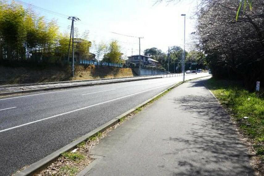現況写真 前面道路は広い歩道がございます。